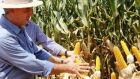 Reinaldo vai investir em logística para dar competitividade ao agronegócio