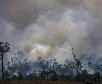 Criação de Conselho da Amazônia e de Força Nacional Ambiental é anunciada por Bolsonaro