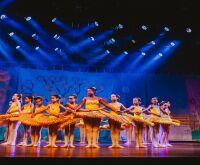Bassetto Ballet abre 110 novas vagas de balé gratuito para crianças