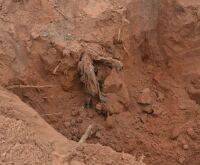 Mãe de vítima de Nando, é indenizada após esperar 8 meses para enterrar a filha