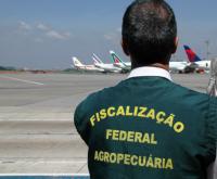 Novo processo vai desburocratizar importação em portos, aeroportos e fronteiras