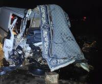 Pai, mãe e filho morrem em acidente entre van e caminhão em MS; cachorro sobrevive