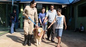 Cão terapeuta alegra manhã de estudantes com distúrbio de conduta