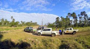 Operação Veredas retira três mil cabeças de gado de Área de Proteção
