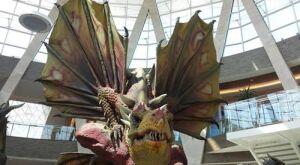 Em exposição gratuita, Dragões gigantes impressionam visitantes