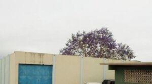 Gambiarra pode ser motivo de jovem ter sido eletrocutado em Unei da Capital