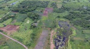 Arqueólogos encontram grandioso monumento da civilização maia