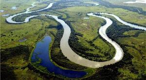 Lei sancionada define 12 de novembro como Dia do Pantanal em MS
