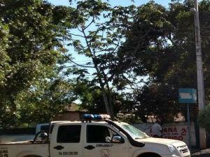 Família brasileira e assassinada na fronteira
