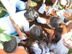Prefeitura celebra Dia da Árvore nesta quinta-feira (21) com plantio e doação de mudas