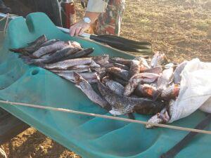 PMA e GTO prendem dois pescadores mato-grossenses por pesca ilegal