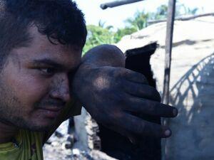 Operação Federal é deflagrada para combate de destruição da Amazônia