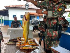 Na próxima temporada de pesca, multa mínima para quem capturar o dourado será de R$ 2,7 mil