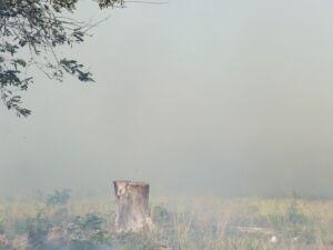 Fumaça toma conta de terreno baldio no Itamaraca