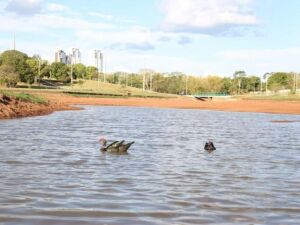 Lago do Parque das Nações estará cheio em 48 horas, prevê secretário