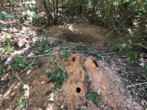 Local onde suspeita enterrou a própria filha em cidade de MS