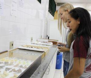 Alunos do ensino médio conheceram os laboratórios da UCDB