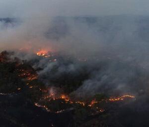 Fogo queimou uma extensa área ao lado da MS-178, rodovia que liga os municípios de Bonito e Bodoquena
