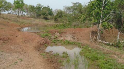 Fazendeiro leva multa de R$ 5 Mil por degradação ambiental em Paranaíba