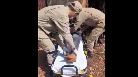 Mulher morre nove dias após ser espancada a tijoladas pelo marido