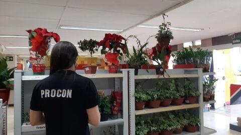 Procon realiza pesquisa de preços em produtos para Dia dos Finados