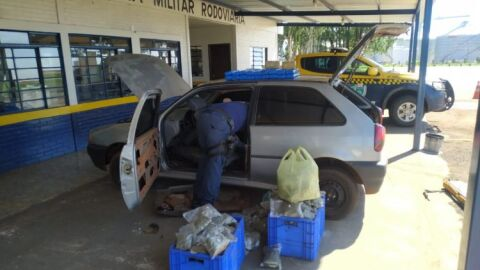 Rapaz de 18 anos é preso transportando mais de 60 kg de droga