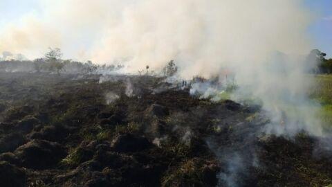 Pecuarista leva multa de R$ 5 mil por incêndio em pastagem