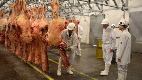 Exportação de carne bovina bate recorde histórico em 2020, com US$ 8,5 bilhões