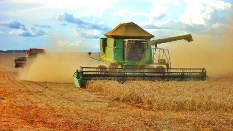 Produção de Mato Grosso do Sul atinge recorde e ultrapassa estimativas