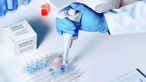 Ao vivo: Dados atualizados sobre a Covid-19 e informação sobre a vacinação em MS