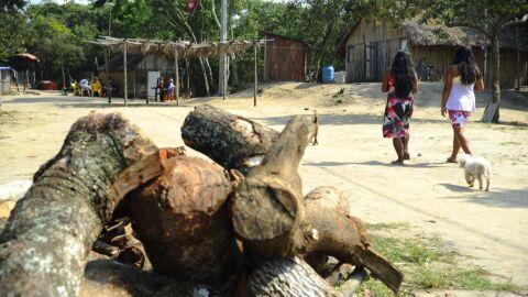 Diante da omissão do Governo, STF suspende despejos e remoções de quilombolas