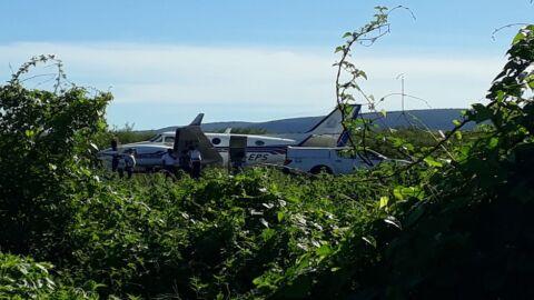 Avião carregado de vacinas bate em jumento que estava em pista