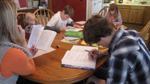Câmara debate experiências internacionais de educação domiciliar; acompanhe