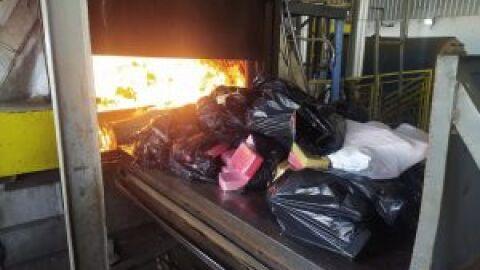 Polícia Civil incinera 1,4 tonelada de maconha em Tacuru