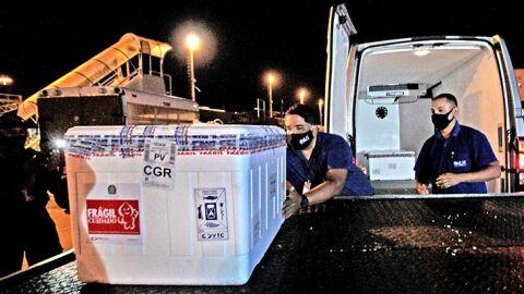 Com 13º lote, Mato Grosso do Sul soma 708 mil doses recebidas da vacina contra Covid-19