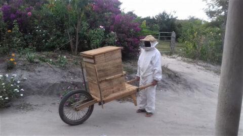 Apicultor cria carrinho para transporte de melgueiras