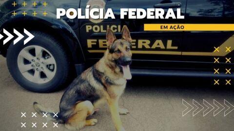 Polícia Federal prende em flagrante dupla por tráfico de cocaína