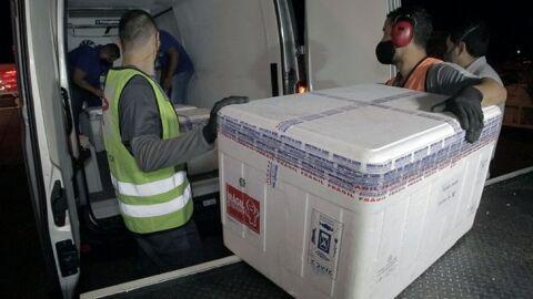 MS recebe 14º lote de vacina com 45,5 mil doses enviadas pelo Ministério da Saúde