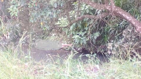 Identificado o corpo achado às margens de córrego na Moreninha; estava desaparecido há 10 dias