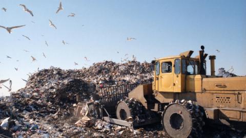 Erradicar os lixões no Brasil é questão de saúde pública