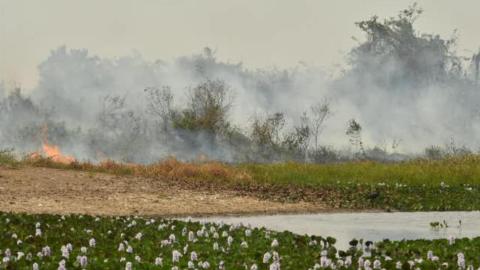 Ação que busca previnir incêndios no Pantanal capacita moradores locais