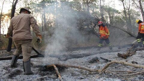 Corpo de Bombeiros faz alerta para prevenção de queimadas durante período de estiagem