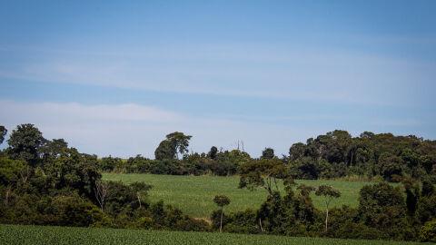 CNA debate critérios de sustentabilidade aplicáveis na concessão de crédito rural