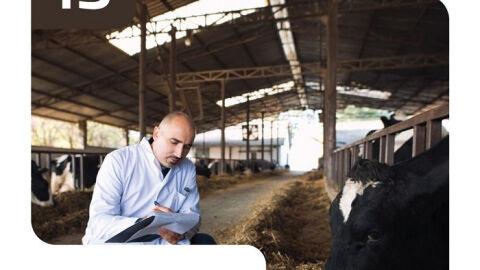 Zootecnistas contribuem para o bom desempenho da pecuária brasileira