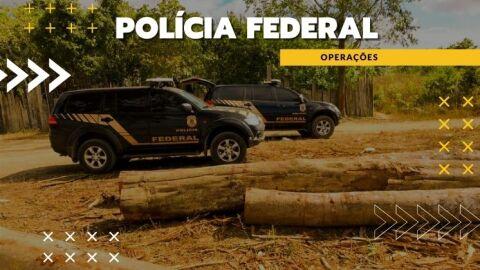 PF apreende quatro caminhões com mais de 130 m³ de madeira nativa