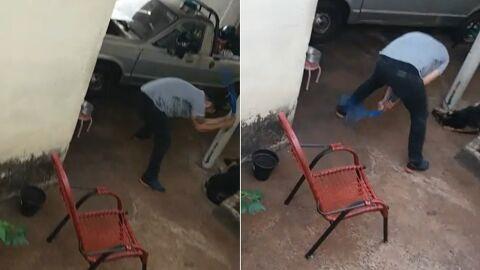 """Vídeo: pastor é preso após ser filmado espancado cachorro; """"Chorava, gritava"""", relata vizinho"""
