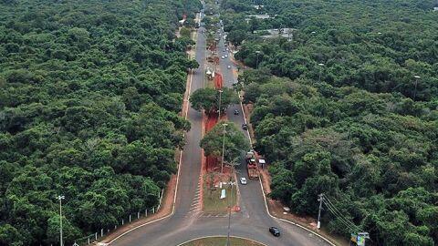 Revitalização do Parque dos Poderes terá foco na preservação da vegetação nativa