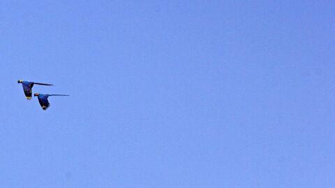 Sol com poucas nuvens aumenta sensação de calor em MS nesta quarta-feira