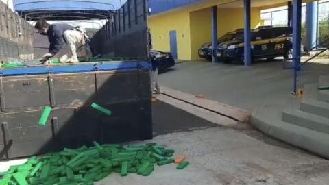 PRF apreende 1,2 tonelada de maconha em Eldorado (MS)