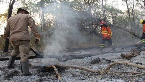 Estão suspensas todas as autorizações de 'queima controlada' no Pantanal